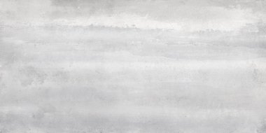 "Overlay Series Tile 12"" x 24"" - Dolphin"