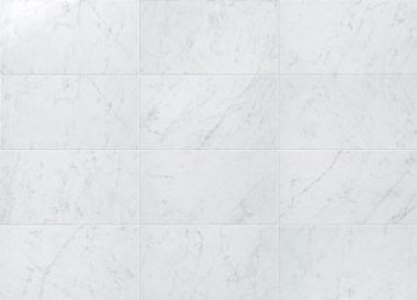 """Eon Tile Wall Shiny 12 3/8"""" x 22 1/2"""" - Carrara"""