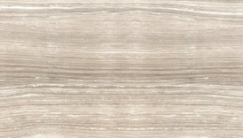 Eramosa Tile Polished 12