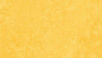 Marmoleum Click 11.81 x 11.81 - Lemon Zest