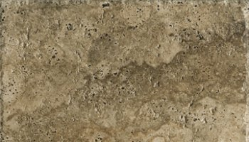 Archaeology Tile 6.5