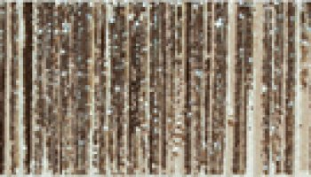 Kelly Tile Gregaris Listello 2