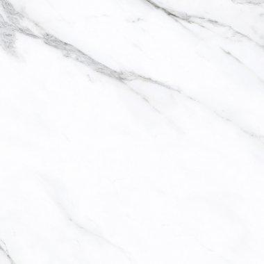 """Prestigio Series Tile Polished 12"""" x 24"""" - Statuario"""