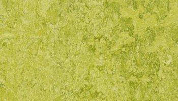 Marmoleum Click 11.81 x 11.81 - Chartreuse