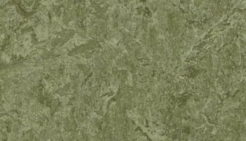 Marmoleum Click 11.81 x 35.43 - Pine Forest