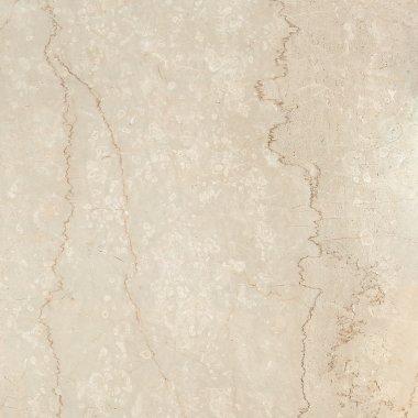 "Prestigio Series Tile Polished 12"" x 24"" - Botticino"