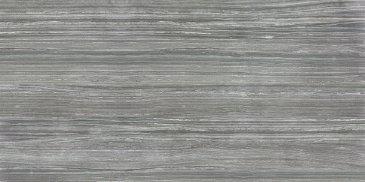 """Eramosa Tile Polished 12"""" x 24"""" - Carbon"""