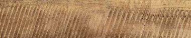 "Redeem Tile 7 6/8"" x 39 3/8"" - Gold"