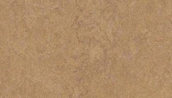 Marmoleum Click 11.81 x 11.81 - Camel