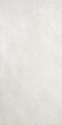 """Evolve Tile 12"""" x 24"""" - White"""