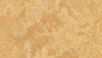 Marmoleum Click 11.81 x 11.81 - Van Gogh